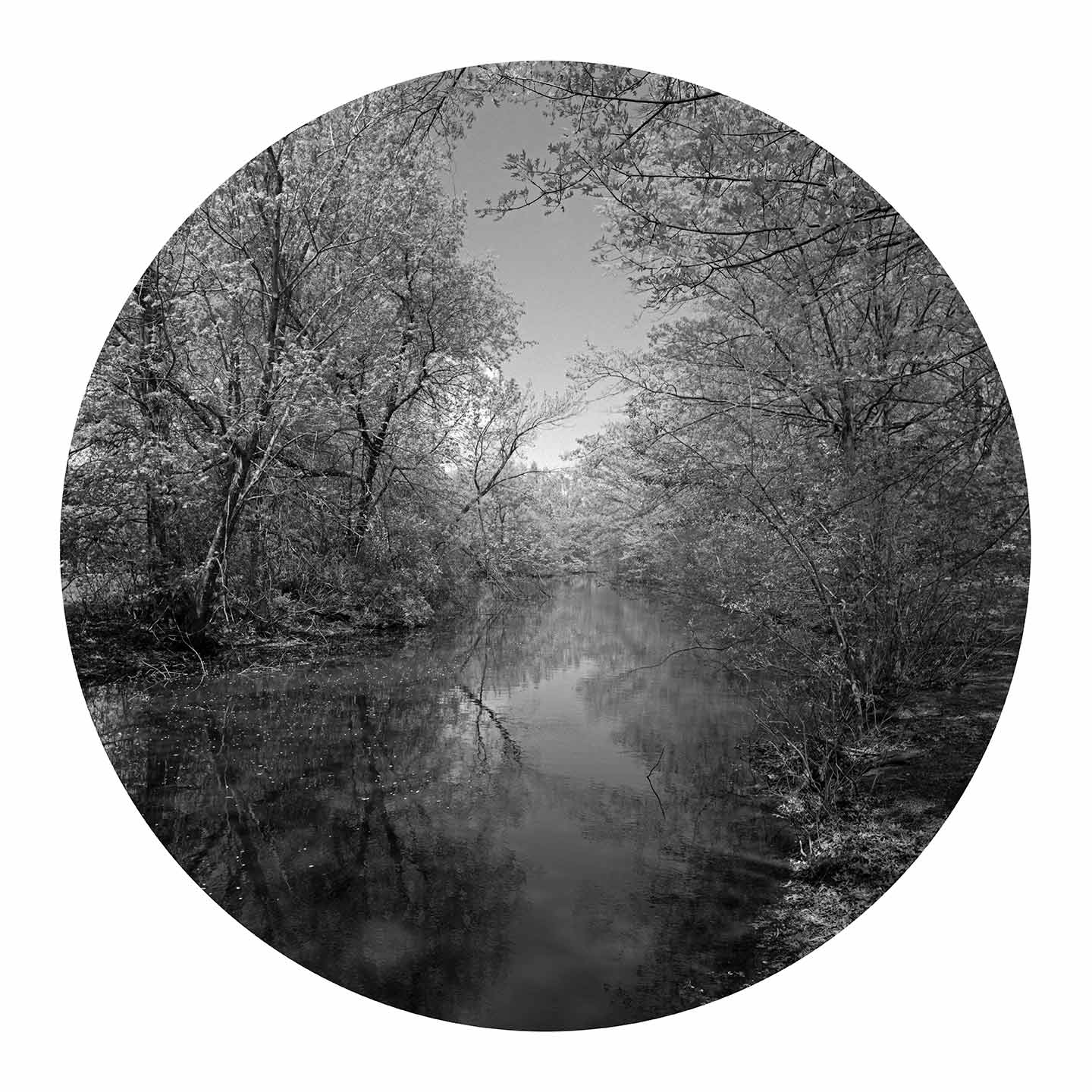 """Olmstead (circle), black and white photograph, 42"""" x 42"""""""